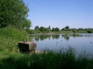 L'étang de St André